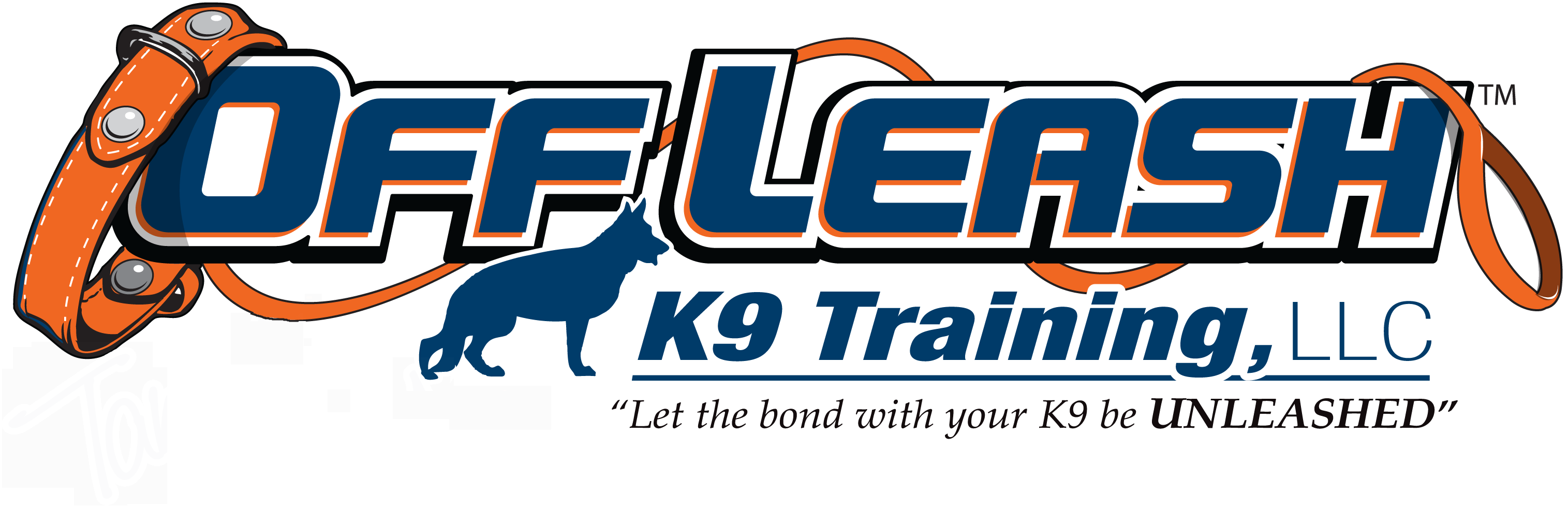 Lansing MI Offleash K9 Dog Training